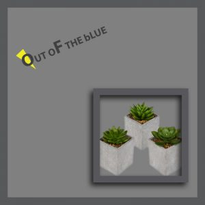 OUT OF THE BLUE HOME
